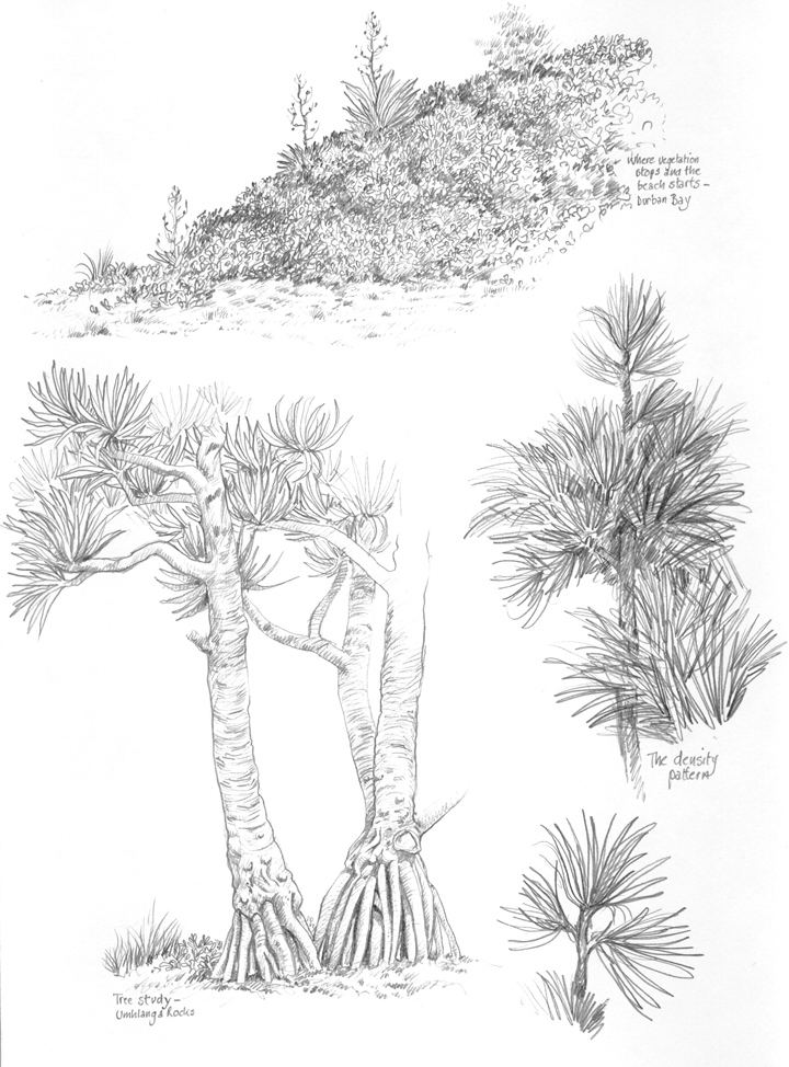 Tree Studies by Alan Bell
